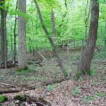 west suburban acreage for sale