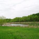 lake minnetonka area acreage for sale